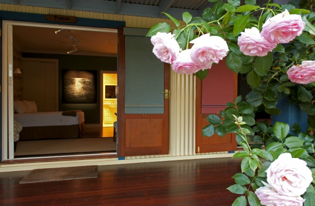roses on verandah