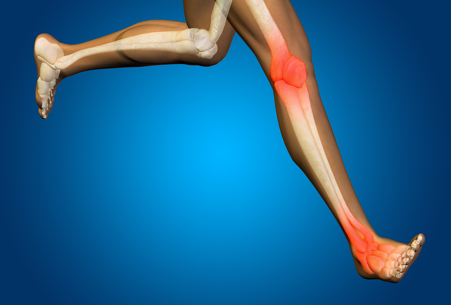 Joint Cartilage and Preventing Knee Arthritis